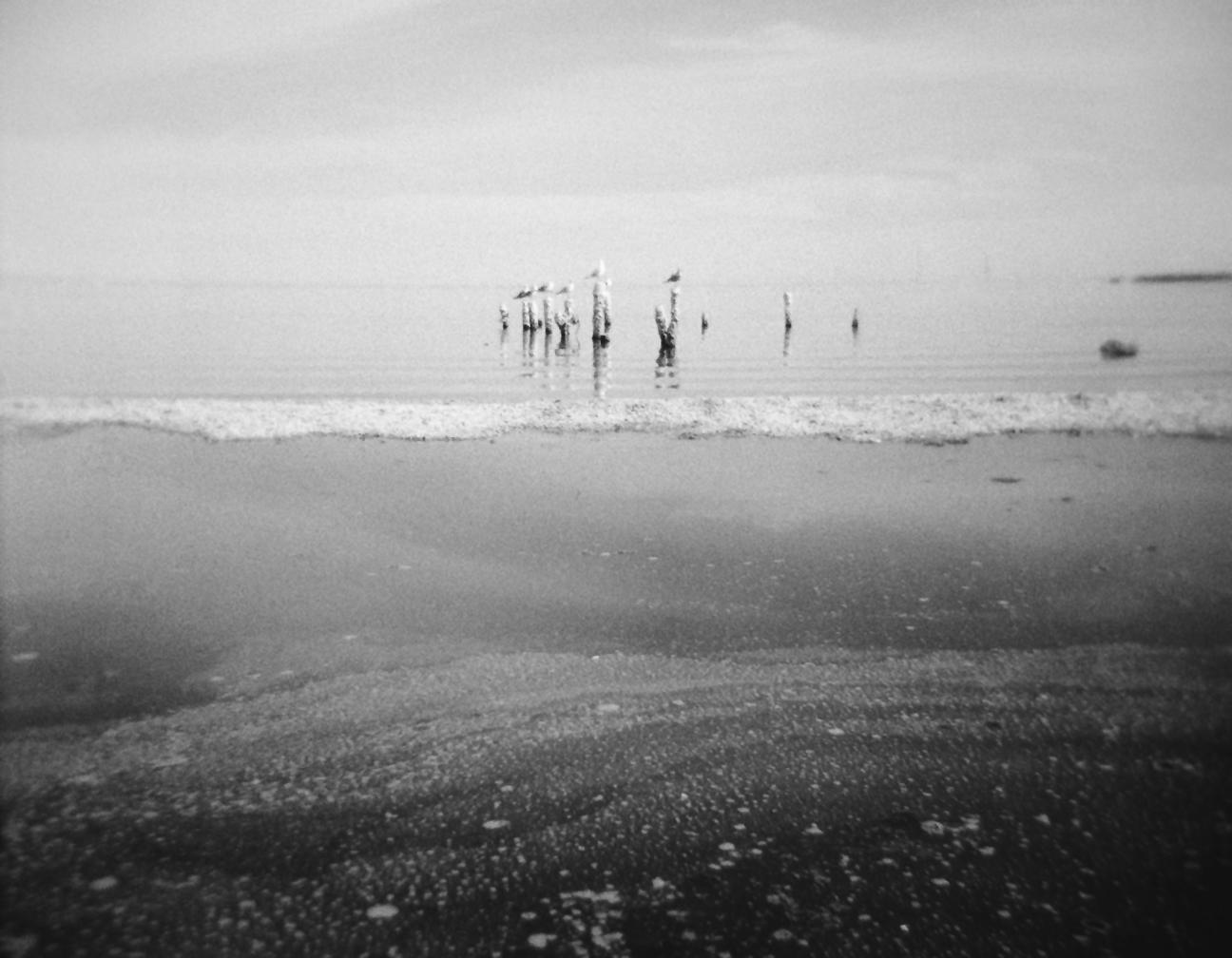 13 Salton Sea