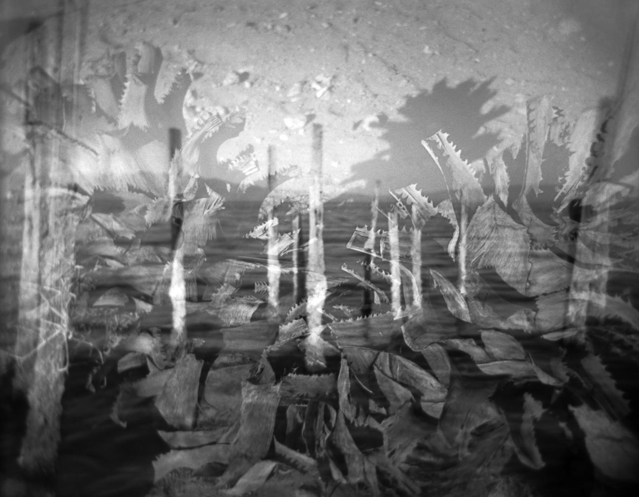 5 Salton Sea